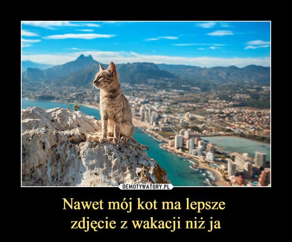 Nawet mój kot ma lepsze zdjęcie z wakacji niż ja –