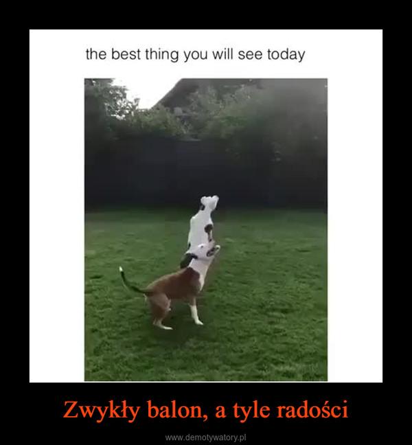 Zwykły balon, a tyle radości –