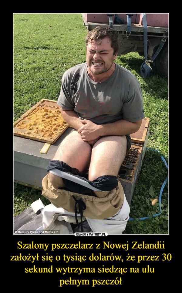 Szalony pszczelarz z Nowej Zelandii założył się o tysiąc dolarów, że przez 30 sekund wytrzyma siedząc na ulu pełnym pszczół –