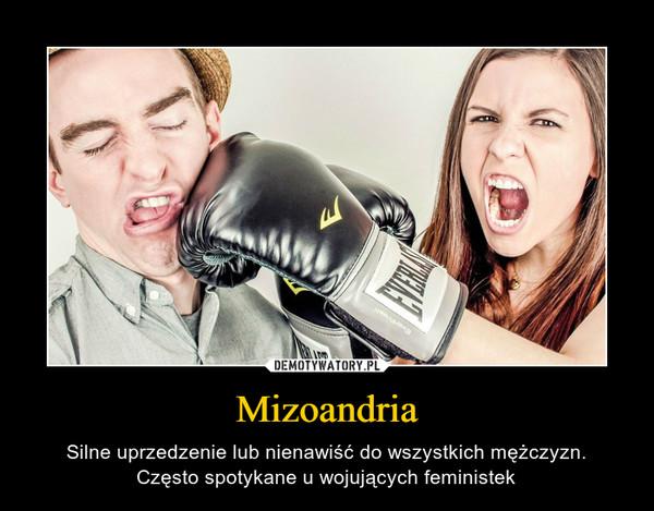 Mizoandria – Silne uprzedzenie lub nienawiść do wszystkich mężczyzn.Często spotykane u wojujących feministek