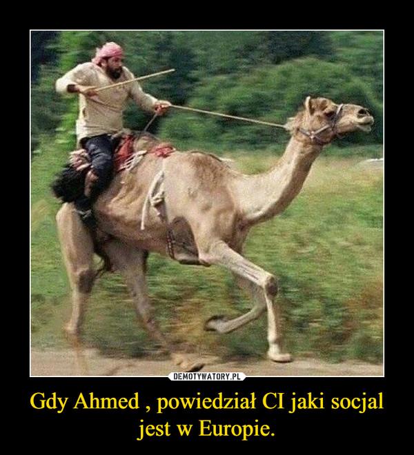Gdy Ahmed , powiedział CI jaki socjal jest w Europie. –