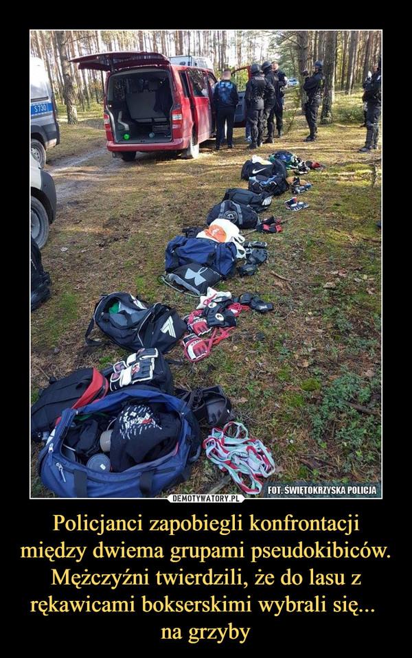 Policjanci zapobiegli konfrontacji między dwiema grupami pseudokibiców. Mężczyźni twierdzili, że do lasu z rękawicami bokserskimi wybrali się... na grzyby –