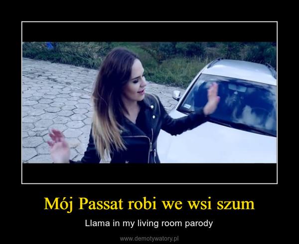 Mój Passat robi we wsi szum – Llama in my living room parody
