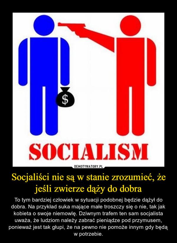Socjaliści nie są w stanie zrozumieć, że jeśli zwierze dąży do dobra – To tym bardziej człowiek w sytuacji podobnej będzie dążył do dobra. Na przykład suka mające małe troszczy się o nie, tak jak kobieta o swoje niemowlę. Dziwnym trafem ten sam socjalista uważa, że ludziom należy zabrać pieniądze pod przymusem, ponieważ jest tak głupi, że na pewno nie pomoże innym gdy będą w potrzebie.
