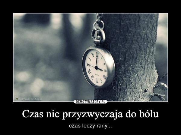 Czas nie przyzwyczaja do bólu – czas leczy rany...