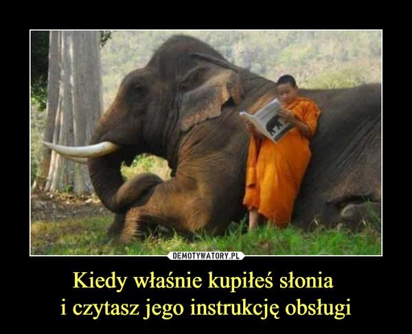 Kiedy właśnie kupiłeś słonia i czytasz jego instrukcję obsługi –