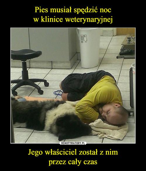 Pies musiał spędzić noc w klinice weterynaryjnej Jego właściciel został z nim przez cały czas