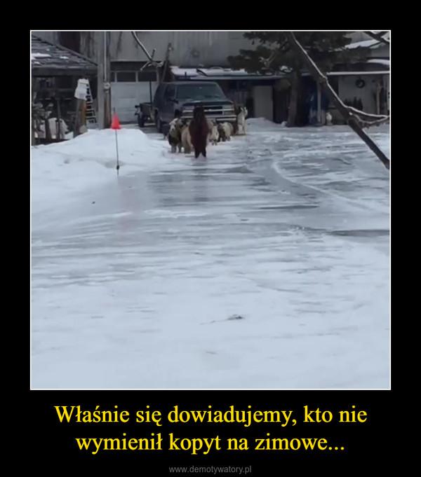 Właśnie się dowiadujemy, kto nie wymienił kopyt na zimowe... –
