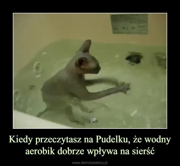Kiedy przeczytasz na Pudelku, że wodny aerobik dobrze wpływa na sierść –