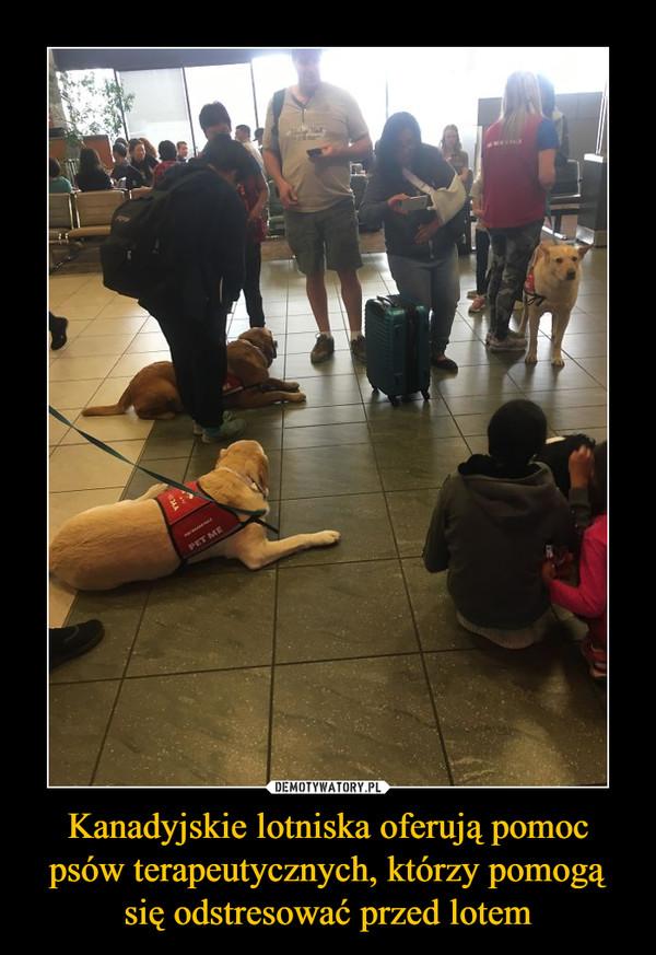 Kanadyjskie lotniska oferują pomoc psów terapeutycznych, którzy pomogą się odstresować przed lotem –