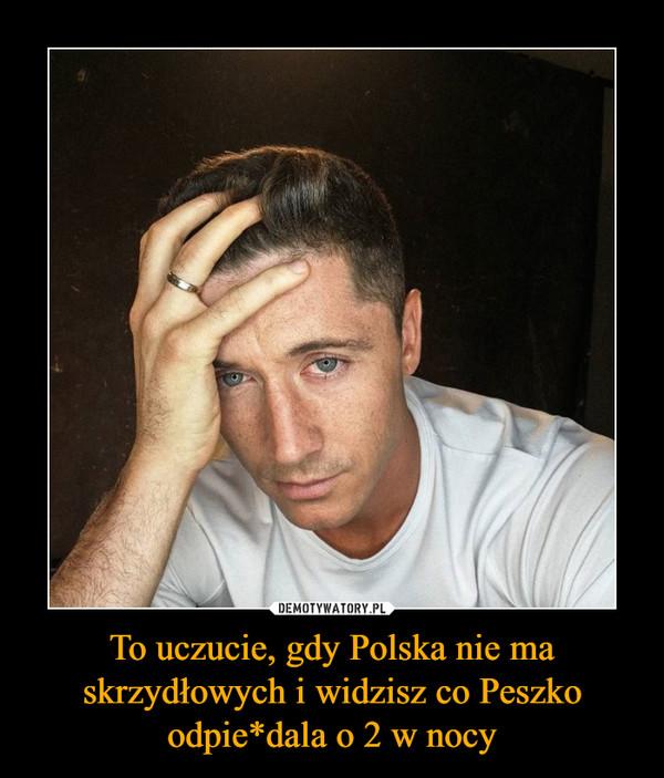 To uczucie, gdy Polska nie ma skrzydłowych i widzisz co Peszko odpie*dala o 2 w nocy –