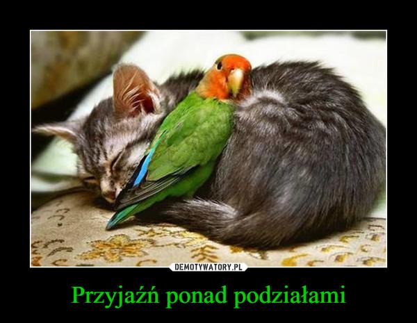 Przyjaźń ponad podziałami –