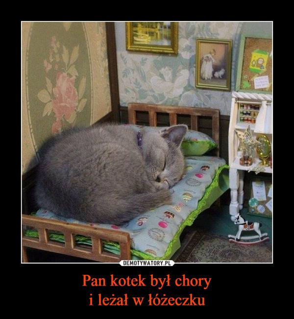 Pan kotek był choryi leżał w łóżeczku –