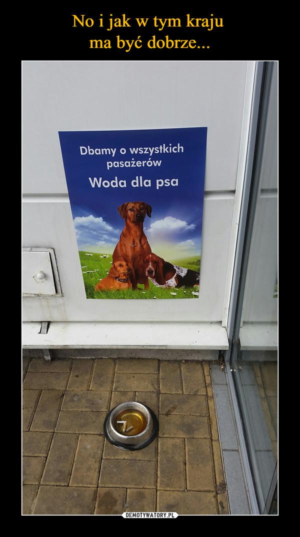 –  Dbamy o wszystkich pasażerówWoda dla psa