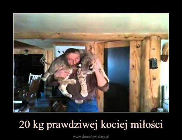 20 kg prawdziwej kociej miłości –