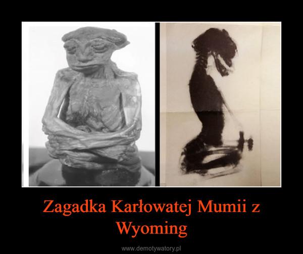 Zagadka Karłowatej Mumii z Wyoming –