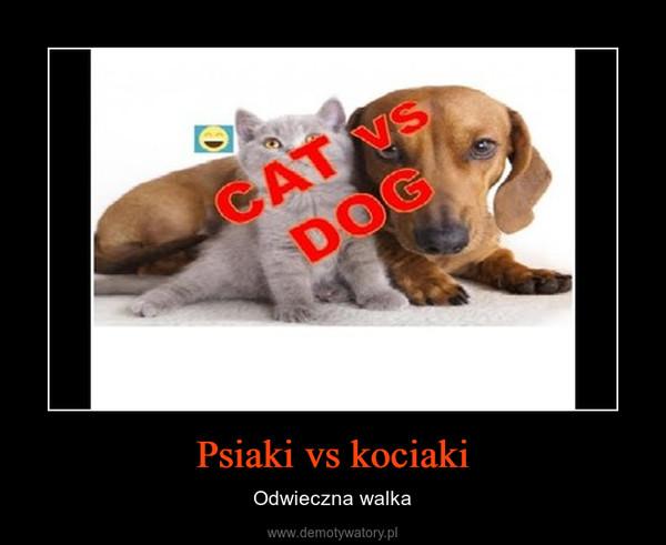 Psiaki vs kociaki – Odwieczna walka