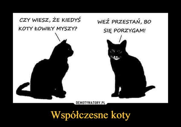 Współczesne koty –  CZY WIESZ, ŻE KIEDYŚ KOTY ŁOWIŁY MYSZY? WEŹ PRZESTAŃ, BO SIĘ PORZYGAM!