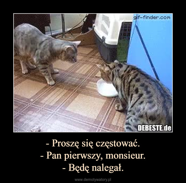 - Proszę się częstować.- Pan pierwszy, monsieur.- Będę nalegał. –