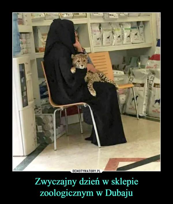 Zwyczajny dzień w sklepie zoologicznym w Dubaju –