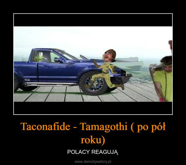 Taconafide - Tamagothi ( po pół roku) – POLACY REAGUJĄ