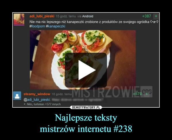 Najlepsze tekstymistrzów internetu #238 –