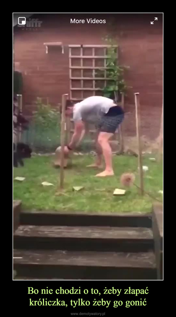 Bo nie chodzi o to, żeby złapać króliczka, tylko żeby go gonić –