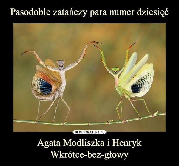 Agata Modliszka i Henryk Wkrótce-bez-głowy –