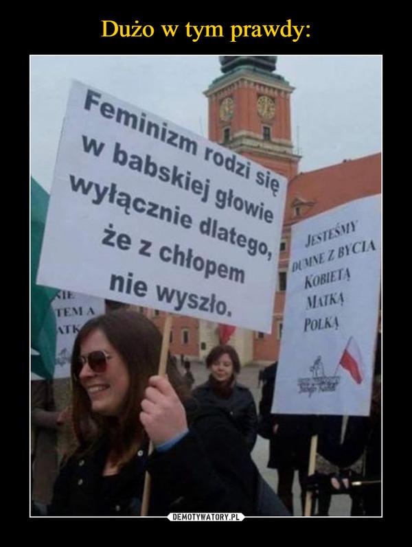 –  Feminizm rodzi się w babskiej głowie wyłącznie dlatego, że z chłopem nie wyszło
