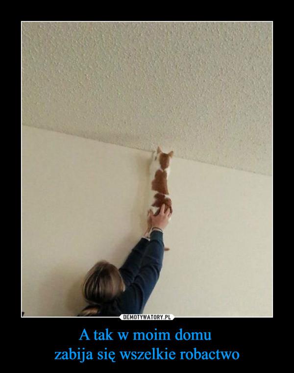 A tak w moim domu zabija się wszelkie robactwo –