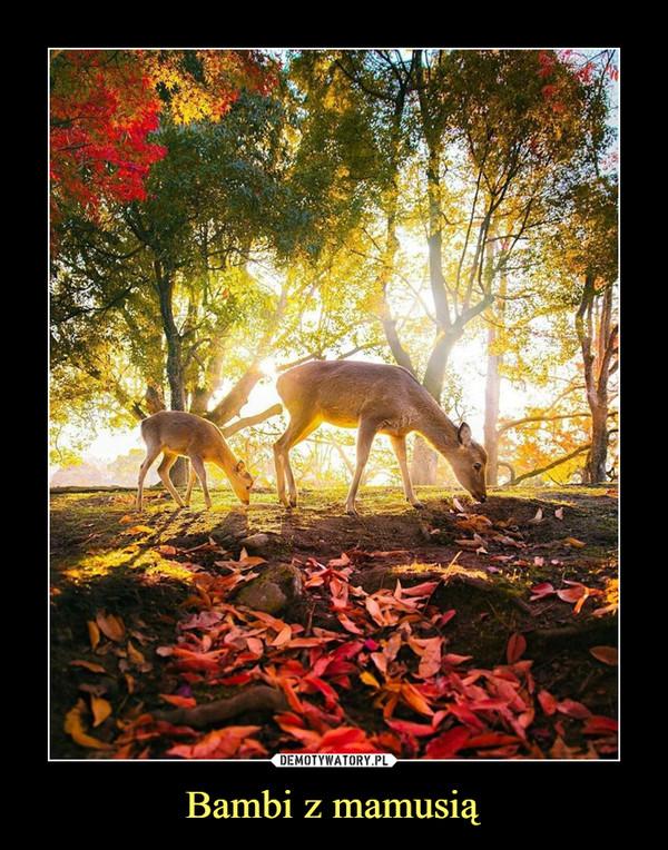 Bambi z mamusią –