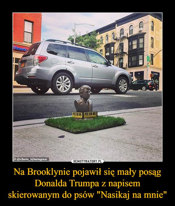 """Na Brooklynie pojawił się mały posąg Donalda Trumpa z napisem skierowanym do psów """"Nasikaj na mnie"""" –"""