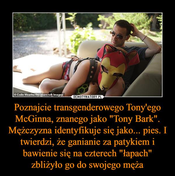 """Poznajcie transgenderowego Tony'ego McGinna, znanego jako """"Tony Bark"""". Mężczyzna identyfikuje się jako... pies. I twierdzi, że ganianie za patykiem i bawienie się na czterech """"łapach"""" zbliżyło go do swojego męża –"""