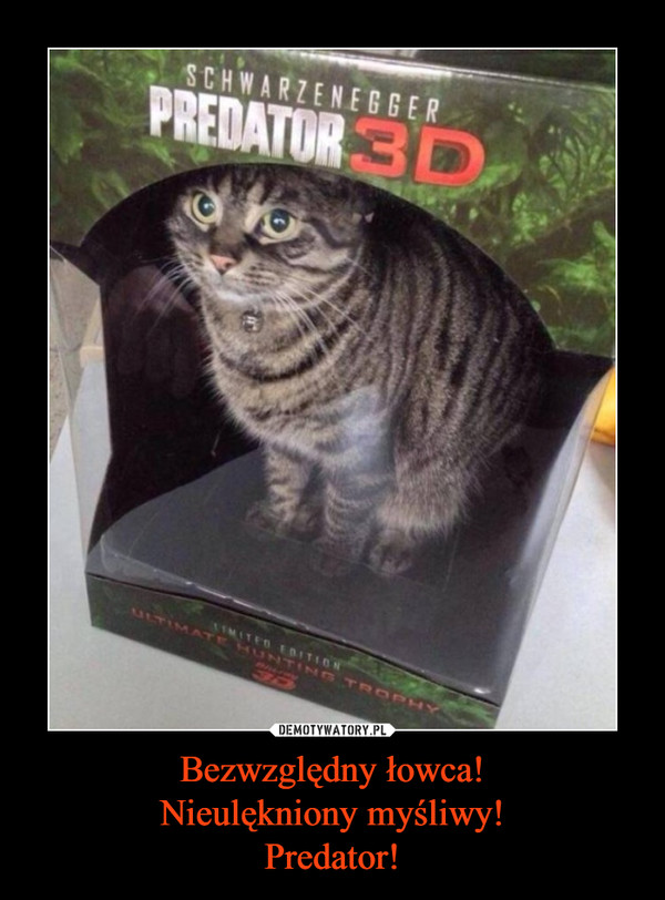 Bezwzględny łowca!Nieulękniony myśliwy!Predator! –  PREDATOR 3D