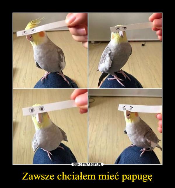 Zawsze chciałem mieć papugę –