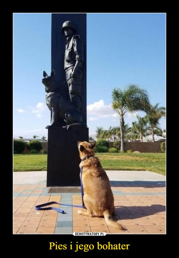 Pies i jego bohater –
