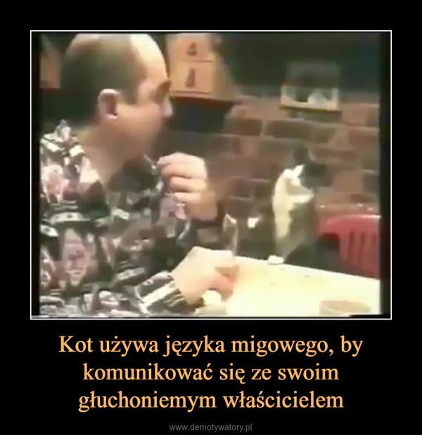 Kot używa języka migowego, by komunikować się ze swoim głuchoniemym właścicielem –