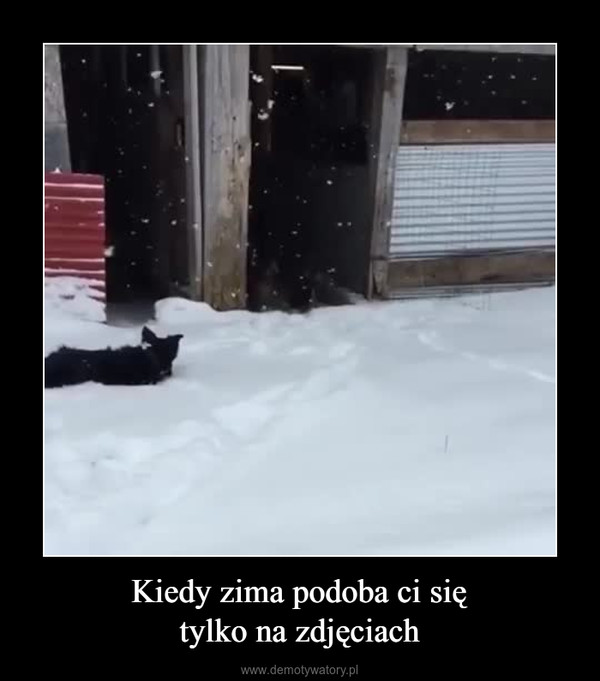 Kiedy zima podoba ci siętylko na zdjęciach –