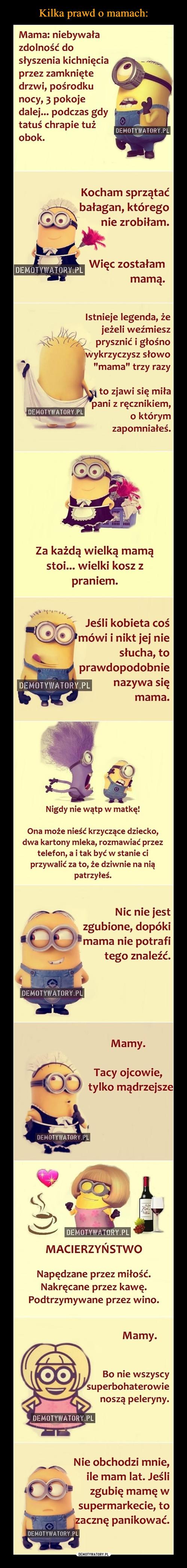 Kilka prawd o mamach:
