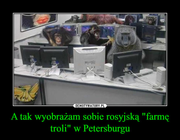 """A tak wyobrażam sobie rosyjską """"farmę troli"""" w Petersburgu –"""