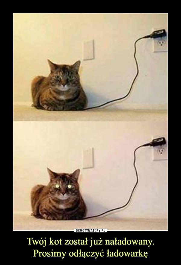 Twój kot został już naładowany.Prosimy odłączyć ładowarkę –