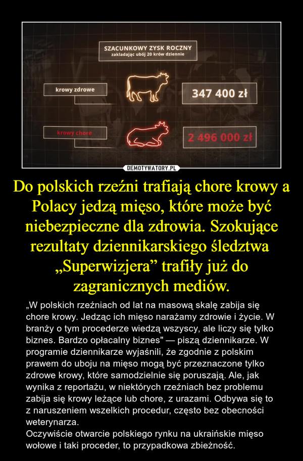 """Do polskich rzeźni trafiają chore krowy a Polacy jedzą mięso, które może być niebezpieczne dla zdrowia. Szokujące rezultaty dziennikarskiego śledztwa  """"Superwizjera"""" trafiły już do zagranicznych mediów. – """"W polskich rzeźniach od lat na masową skalę zabija się chore krowy. Jedząc ich mięso narażamy zdrowie i życie. W branży o tym procederze wiedzą wszyscy, ale liczy się tylko biznes. Bardzo opłacalny biznes"""" — piszą dziennikarze. W programie dziennikarze wyjaśnili, że zgodnie z polskim prawem do uboju na mięso mogą być przeznaczone tylko zdrowe krowy, które samodzielnie się poruszają. Ale, jak wynika z reportażu, w niektórych rzeźniach bez problemu zabija się krowy leżące lub chore, z urazami. Odbywa się to z naruszeniem wszelkich procedur, często bez obecności weterynarza. Oczywiście otwarcie polskiego rynku na ukraińskie mięso wołowe i taki proceder, to przypadkowa zbieżność."""