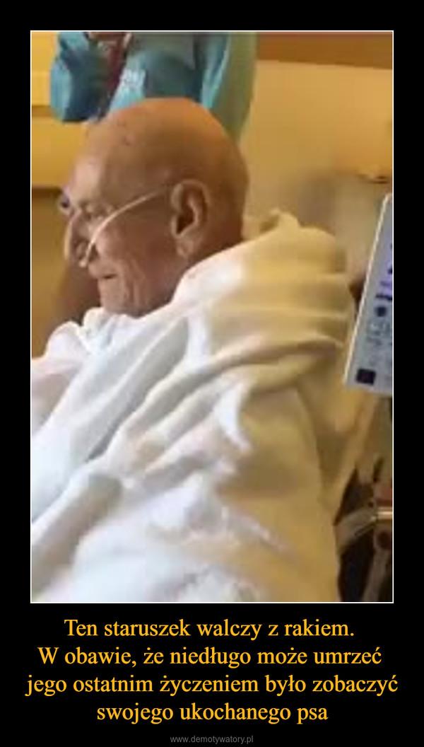 Ten staruszek walczy z rakiem. W obawie, że niedługo może umrzeć jego ostatnim życzeniem było zobaczyć swojego ukochanego psa –