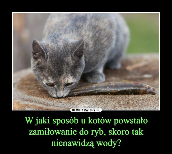 W jaki sposób u kotów powstało zamiłowanie do ryb, skoro tak nienawidzą wody? –