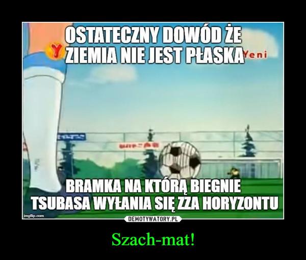 Szach-mat! –