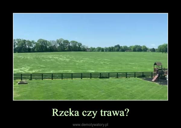 Rzeka czy trawa? –