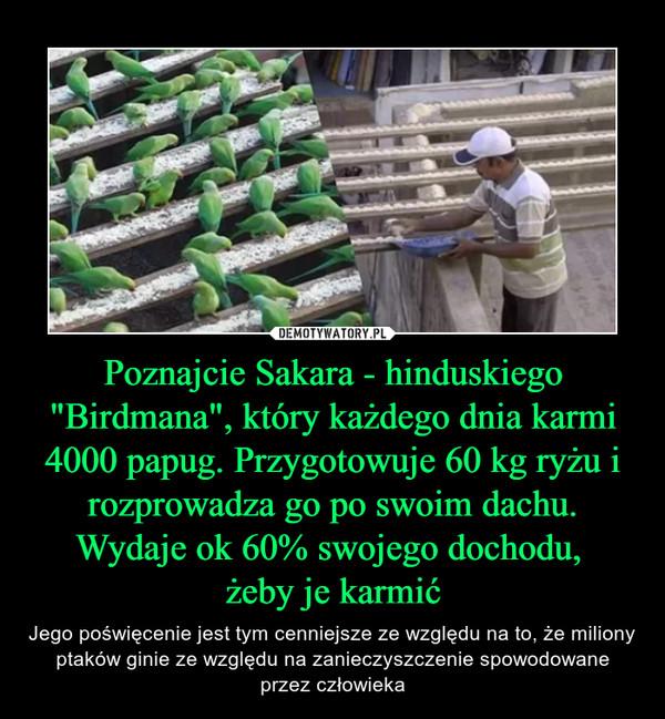 """Poznajcie Sakara - hinduskiego """"Birdmana"""", który każdego dnia karmi 4000 papug. Przygotowuje 60 kg ryżu i rozprowadza go po swoim dachu. Wydaje ok 60% swojego dochodu, żeby je karmić – Jego poświęcenie jest tym cenniejsze ze względu na to, że miliony ptaków ginie ze względu na zanieczyszczenie spowodowane przez człowieka"""