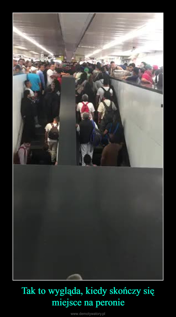 Tak to wygląda, kiedy skończy się miejsce na peronie –