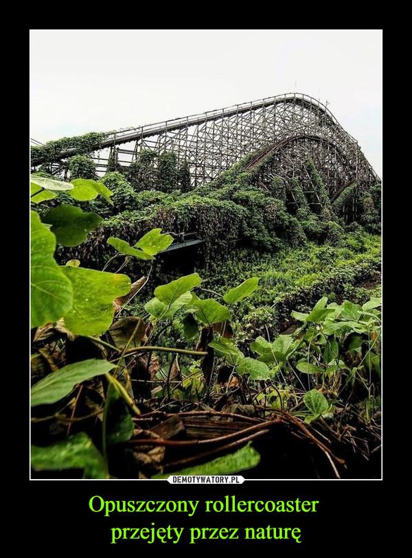Opuszczony rollercoaster przejęty przez naturę –