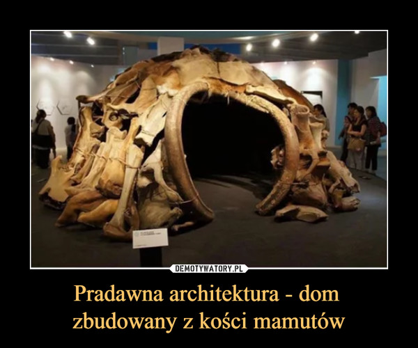 Pradawna architektura - dom zbudowany z kości mamutów –